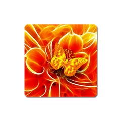 Arrangement Butterfly Aesthetics Orange Background Square Magnet