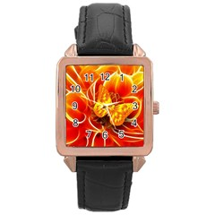 Arrangement Butterfly Aesthetics Orange Background Rose Gold Leather Watch