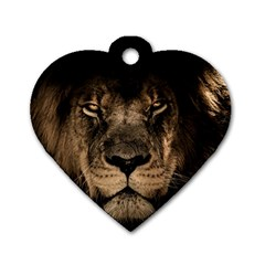 African Lion Mane Close Eyes Dog Tag Heart (two Sides)