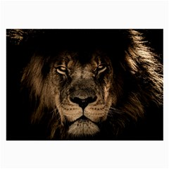 African Lion Mane Close Eyes Large Glasses Cloth