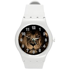 African Lion Mane Close Eyes Round Plastic Sport Watch (m)