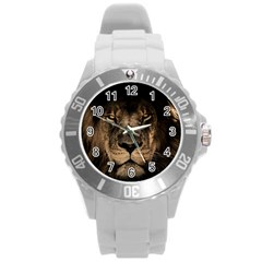 African Lion Mane Close Eyes Round Plastic Sport Watch (l)