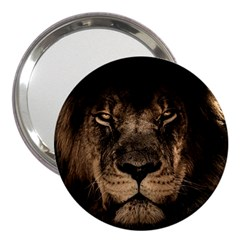 African Lion Mane Close Eyes 3  Handbag Mirrors