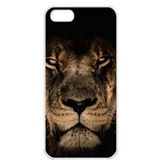 African Lion Mane Close Eyes Apple Iphone 5 Seamless Case (white)