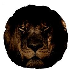 African Lion Mane Close Eyes Large 18  Premium Round Cushions