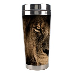 African Lion Mane Close Eyes Stainless Steel Travel Tumblers