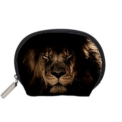 African Lion Mane Close Eyes Accessory Pouches (small)