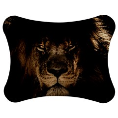 African Lion Mane Close Eyes Jigsaw Puzzle Photo Stand (bow)