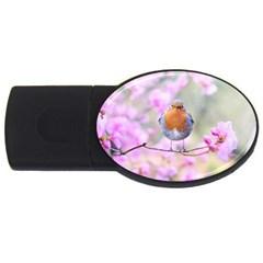 Spring Bird Bird Spring Robin Usb Flash Drive Oval (2 Gb)