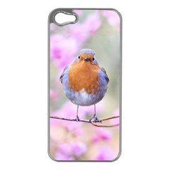 Spring Bird Bird Spring Robin Apple Iphone 5 Case (silver)