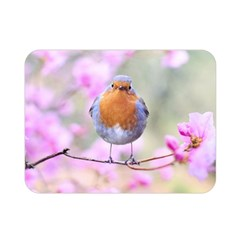 Spring Bird Bird Spring Robin Double Sided Flano Blanket (mini)