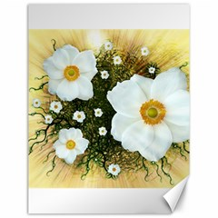 Summer Anemone Sylvestris Canvas 12  X 16