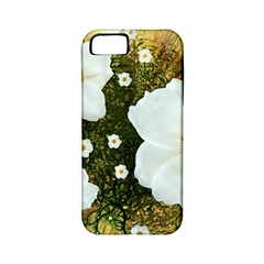 Summer Anemone Sylvestris Apple Iphone 5 Classic Hardshell Case (pc+silicone)