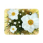Summer Anemone Sylvestris Double Sided Flano Blanket (Mini)  35 x27 Blanket Back
