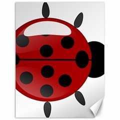 Ladybug Insects Colors Alegre Canvas 12  X 16