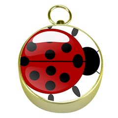 Ladybug Insects Colors Alegre Gold Compasses