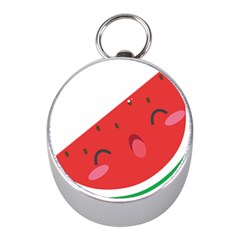 Watermelon Red Network Fruit Juicy Mini Silver Compasses