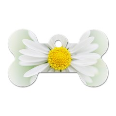 Art Daisy Flower Art Flower Deco Dog Tag Bone (one Side)