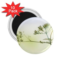 Spring Plant Nature Blue Green 2 25  Magnets (10 Pack)