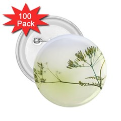 Spring Plant Nature Blue Green 2 25  Buttons (100 Pack)