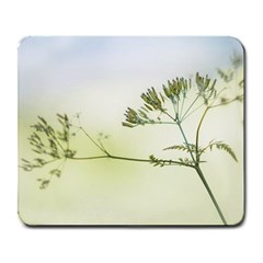 Spring Plant Nature Blue Green Large Mousepads