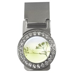 Spring Plant Nature Blue Green Money Clips (cz)