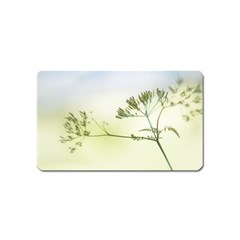 Spring Plant Nature Blue Green Magnet (name Card)