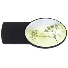 Spring Plant Nature Blue Green Usb Flash Drive Oval (2 Gb)