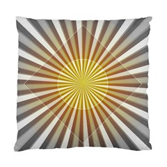 Abstract Art Modern Abstract Standard Cushion Case (two Sides)