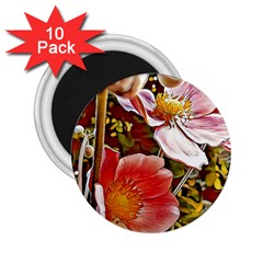 Flower Hostanamone Drawing Plant 2 25  Magnets (10 Pack)