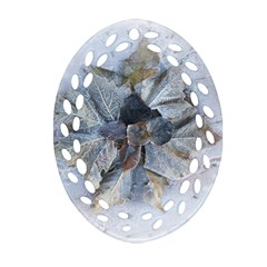 Winter Frost Ice Sheet Leaves Oval Filigree Ornament (two Sides)