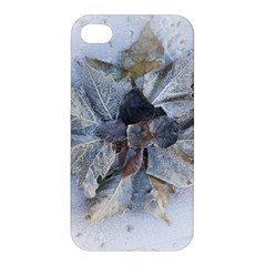 Winter Frost Ice Sheet Leaves Apple Iphone 4/4s Hardshell Case