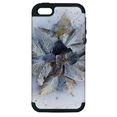Winter Frost Ice Sheet Leaves Apple Iphone 5 Hardshell Case (pc+silicone)