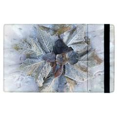 Winter Frost Ice Sheet Leaves Apple Ipad 3/4 Flip Case