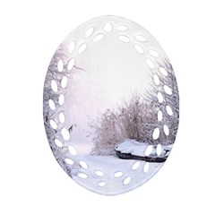 Winter Snow Ice Freezing Frozen Oval Filigree Ornament (two Sides)