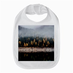 Trees Plants Nature Forests Lake Amazon Fire Phone