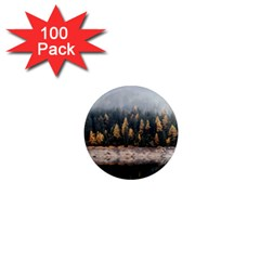 Trees Plants Nature Forests Lake 1  Mini Magnets (100 Pack)
