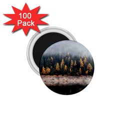 Trees Plants Nature Forests Lake 1 75  Magnets (100 Pack)