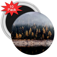 Trees Plants Nature Forests Lake 3  Magnets (10 Pack)