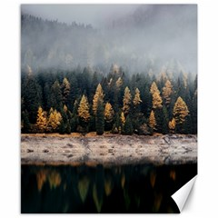 Trees Plants Nature Forests Lake Canvas 8  X 10