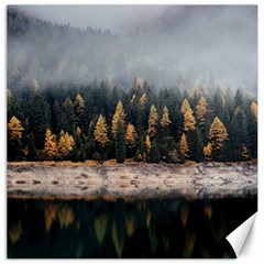 Trees Plants Nature Forests Lake Canvas 16  X 16