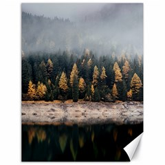 Trees Plants Nature Forests Lake Canvas 18  X 24