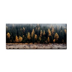 Trees Plants Nature Forests Lake Cosmetic Storage Cases