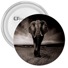 Elephant Black And White Animal 3  Buttons