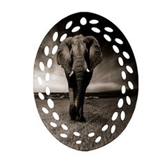Elephant Black And White Animal Oval Filigree Ornament (two Sides)