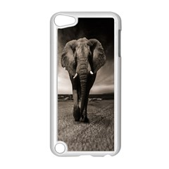 Elephant Black And White Animal Apple Ipod Touch 5 Case (white)
