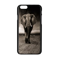 Elephant Black And White Animal Apple Iphone 6/6s Black Enamel Case