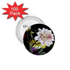 Dahlias Dahlia Dahlia Garden 1 75  Buttons (100 Pack)
