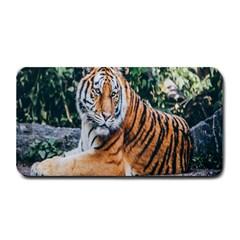Animal Big Cat Safari Tiger Medium Bar Mats