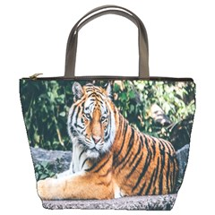 Animal Big Cat Safari Tiger Bucket Bags